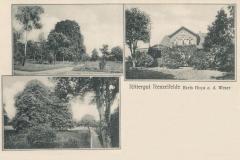 Hauptmann_Heinrich (312)