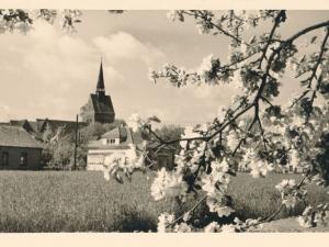Hauptmann_Heinrich (493)