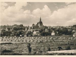 Hauptmann_Heinrich (385)