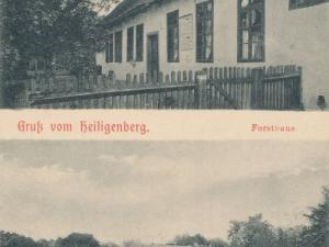 Hauptmann_Heinrich (874)