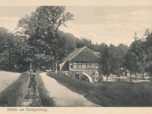 Hauptmann_Heinrich (836)
