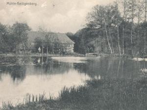 westermann_hartmut-21