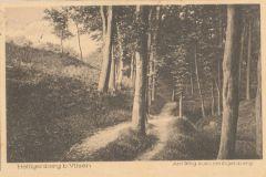 Hauptmann_Heinrich (762)