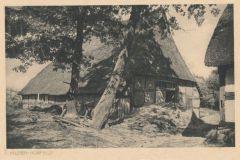 Hauptmann_Heinrich (813)