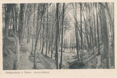 Hauptmann_Heinrich (944)