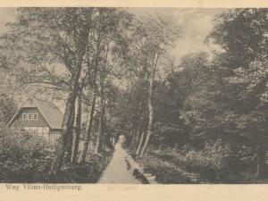 Hauptmann_Heinrich (766)