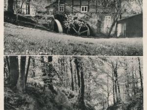 Hauptmann_Heinrich (810)