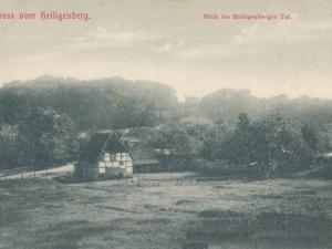 Hauptmann_Heinrich (861)