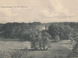 Hauptmann_Heinrich (863)