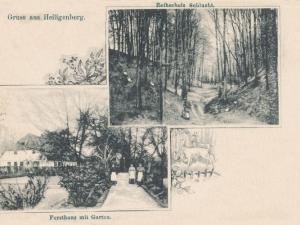 Hauptmann_Heinrich (875)