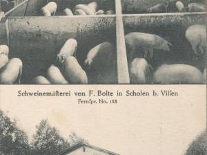 Hauptmann_Heinrich (1036).jpg