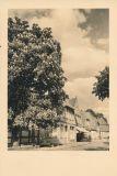 Hauptmann_Heinrich (423)