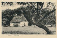 Hauptmann_Heinrich (733)